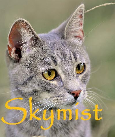 File:Skymist.jpg