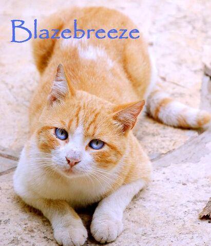 File:Blazebreeze.jpg