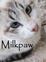 Milkpaw