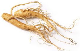 Ginseng-testosterone-nitric-oxide-and-erection-benefits