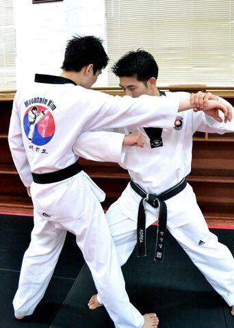 File:Korean Karate.jpg