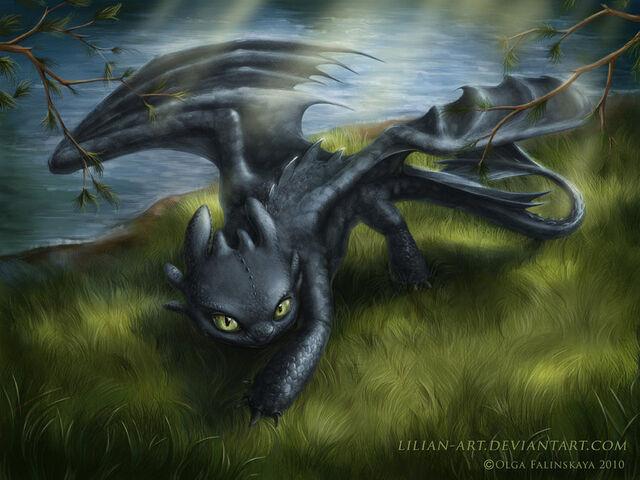 File:Night fury by Lilian art.jpg