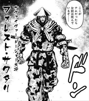 Sawatari manga