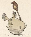 207 tokotocold