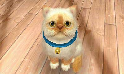 File:-Nintendogs Cats- Precious2.jpg