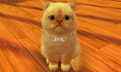 File:-Nintendogs Cats- 017.jpg