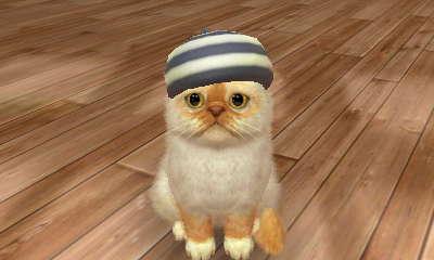 File:Nintendogs+Cats 029.JPG