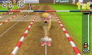 Nintendogs Cat1 006