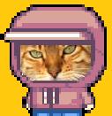 Justin Bennet cat