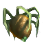 Spiderfruit