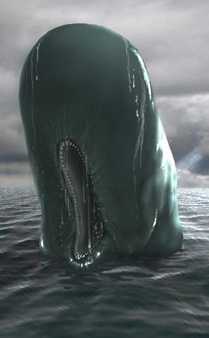 File:Sperm Whale.jpg