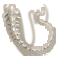 Roo Tail Skeleton