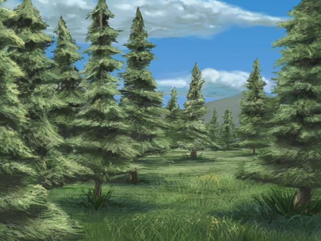File:Spruce Woods-Main.jpg
