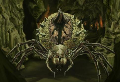File:Cave Spider.jpg