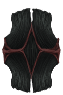 Shield of the Blackwhale