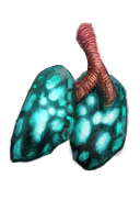 Item Lungs of the Wyvern
