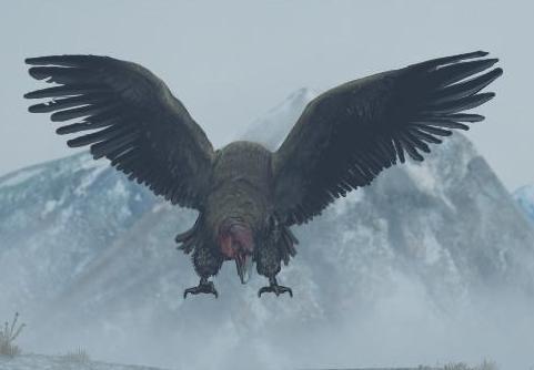 File:Swoop Vulture.jpg