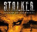 S.T.A.L.K.E.R.: Shadow of Chernobyl No Hud
