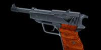 Shepherd Arms 9mm