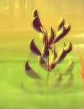 File:Aquatic plant.JPG