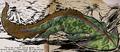 Diplocaulus natatorinutrix