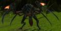 Mantis Dreamweaver
