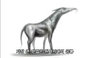 D-warhorse