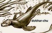 Dobhar-Chu TOTC
