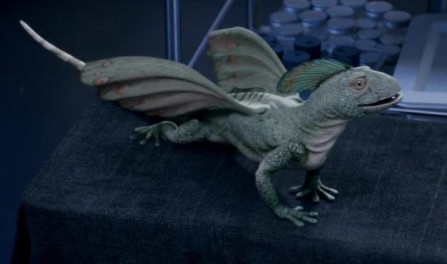 File:Coelurosauravus Primeval.png
