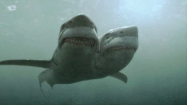 File:2-Headed Shark Attack.png