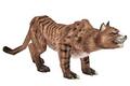 Lynx (Guild Wars)