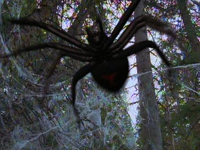 Spiders (Ice Spiders) | Non-alien Creatures Wiki | FANDOM ...