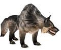 Wolf (Guild Wars)