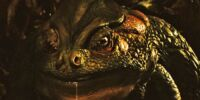 Giant Toad (Pan's Labyrinth)
