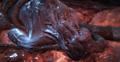 Screamer (Gears of War)