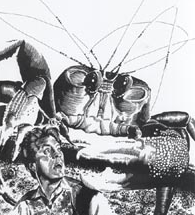 File:TheTimeMachine-Crab.png