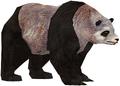 Panda (Guild Wars)