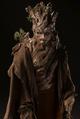Bristlecone Pine Creature