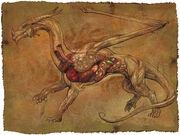 Dragonanatomy