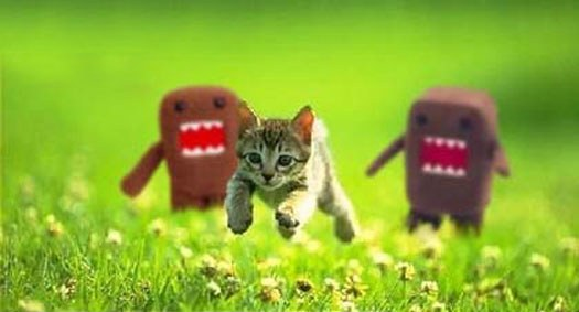 Plik:Kitten chased by grues.jpg
