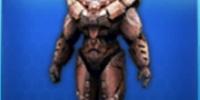 Heavy Armor Set (N.O.V.A. Elite )
