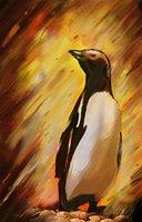 Animal penguin