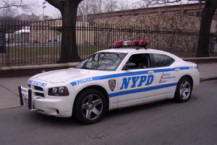 Nypd1336a