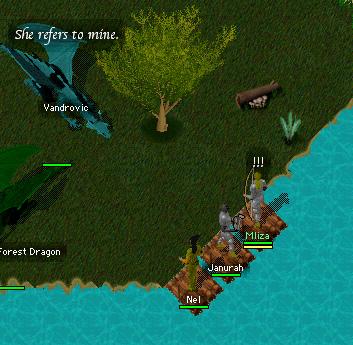 Vandrovicandforest