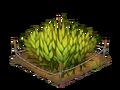 Thumb farm barley01