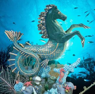File:Hippocampus Seahorse by OZ-best.jpg