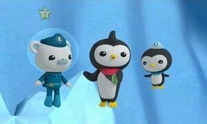Octonauts - Great Penguin Race