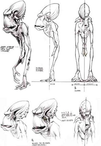 File:Glukkon anatomy concept.png