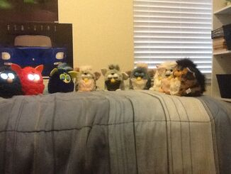 Furby collection