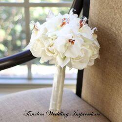 Orchidsnina